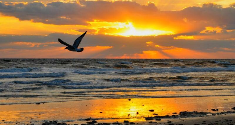 Clima e Temperatura em Florianópolis: Praia do Jurerê