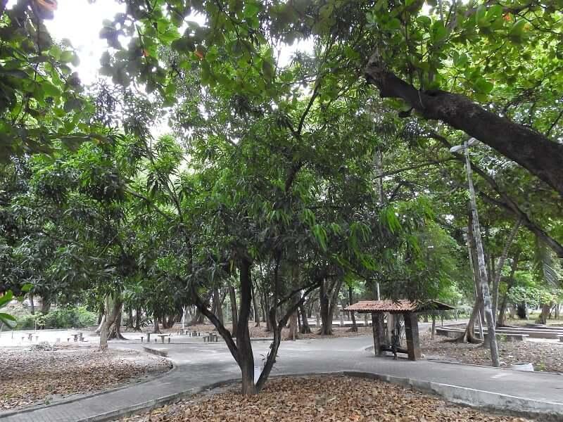 Parques em Fortaleza: Parque Rio Branco
