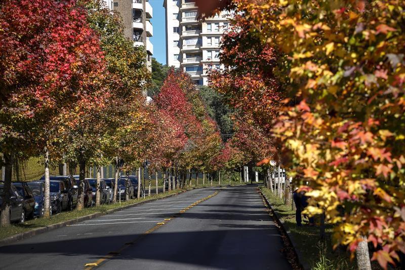 Clima e temperatura em Curitiba: Outono