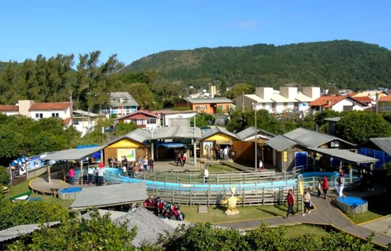 Projeto TAMAR em Florianópolis: Estrutura