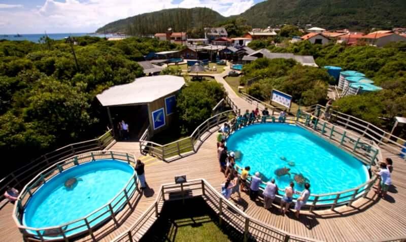Projeto TAMAR em Florianópolis: Infraestrutura dos tanques