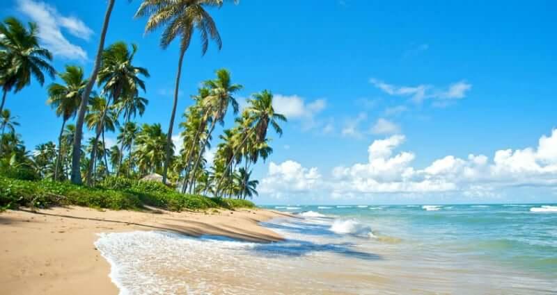 Clima e temperatura em Salvador: Praia do Forte