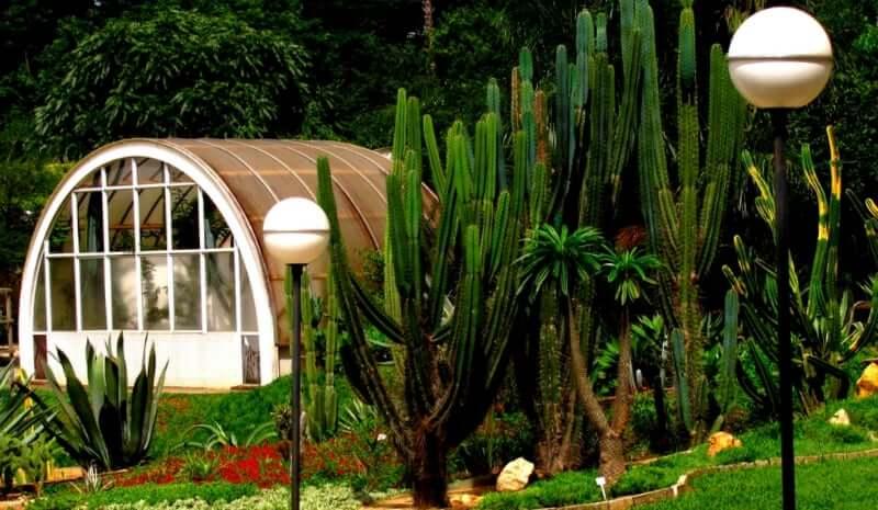 O que fazer com as crianças em Belo Horizonte: Jardim Botânico