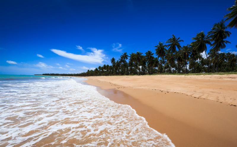 Clima e temperatura em Maceió: Praia com maré baixa