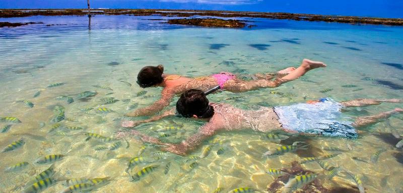 O que fazer com as crianças em Maceió: piscinas naturais