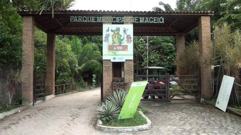 O que fazer com as crianças em Maceió: Parque Municipal de Maceió