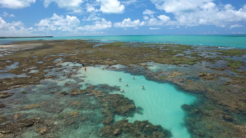 O que fazer em Maceió: Piscinas naturais da Praia de Pratagy