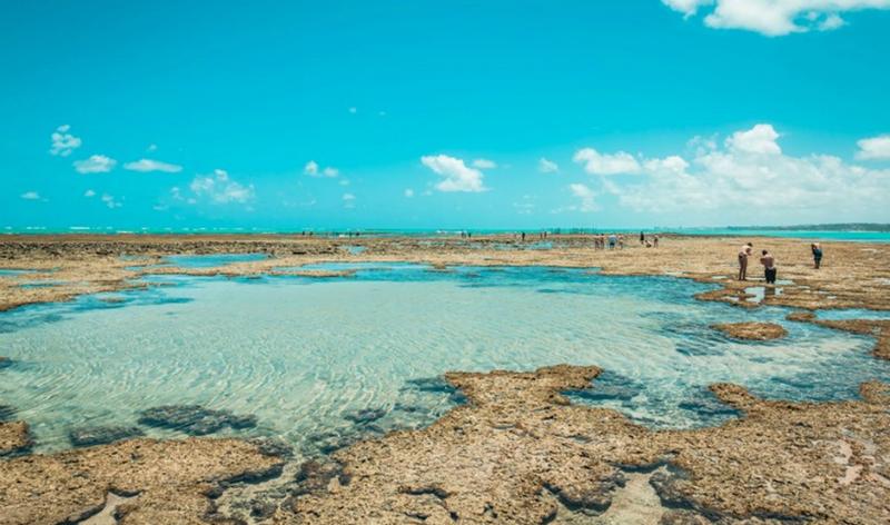 O que fazer com as crianças em Maceió: Praia de Pratagy