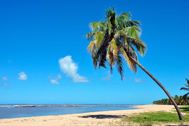 Roteiro de 2 dias em Maceió: Praia do Gunga