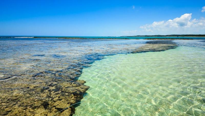 O que fazer em Maceió: Águas cristalinas de São Miguel dos Milagres